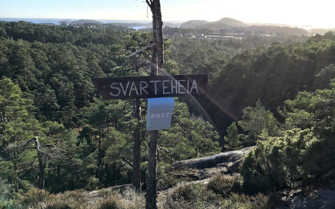 Visste du at vi har en trolleskog i Søgne?